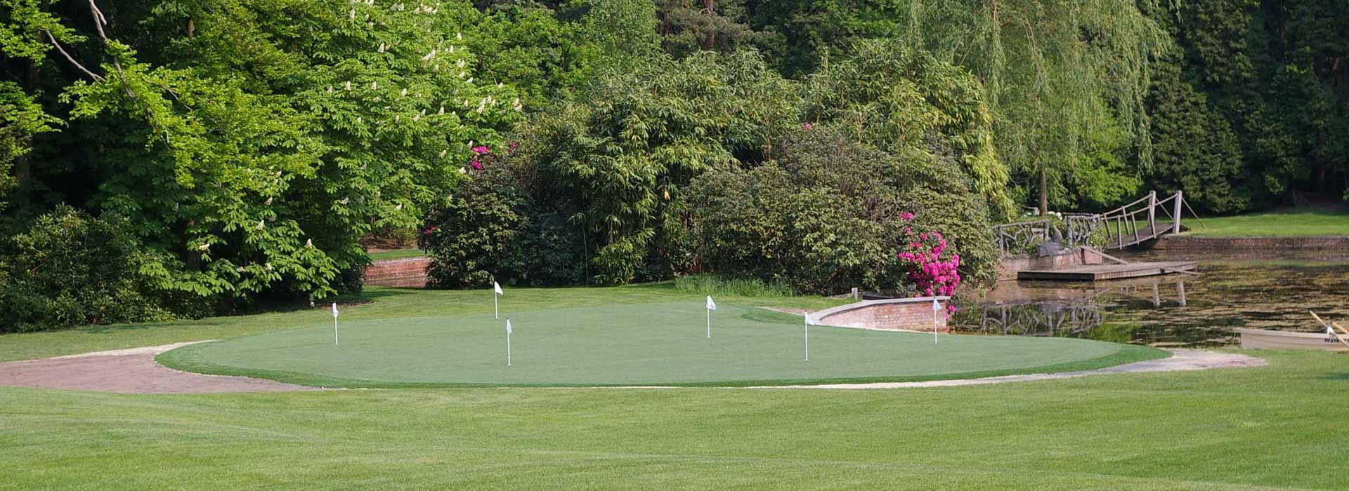 Large residential putting green surrounded by foliage